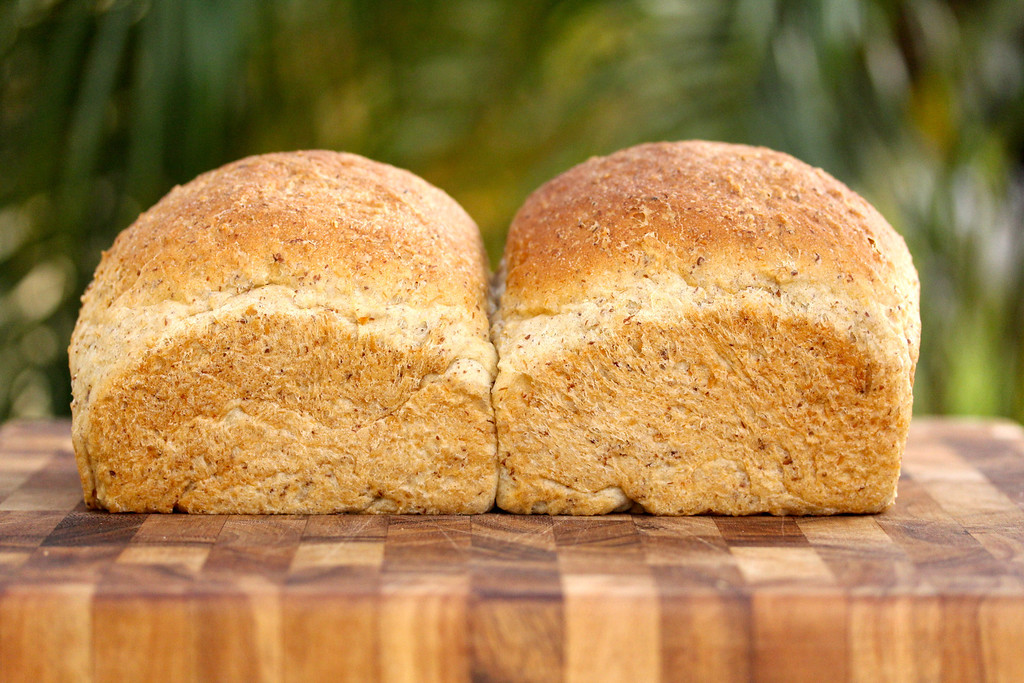 Whole Wheat, Oat, & Flax Seed Bread | Sharing Bread