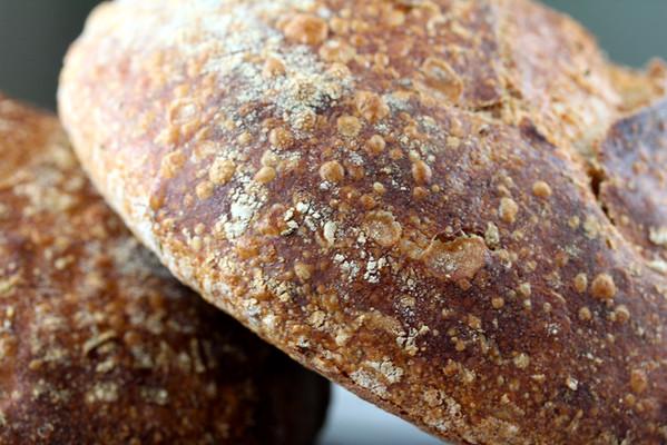 Pain au Romarin | Sourdough Rosemary Bread