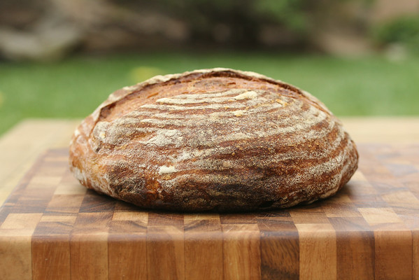 Pain de Pecan from Karen's Kitchen Stories